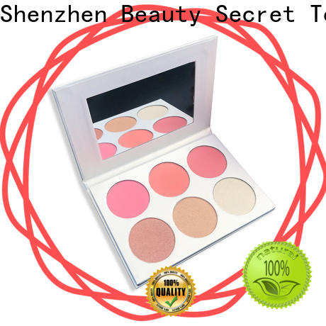 professional blusher kit supplier for makeup