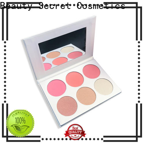 Beauty Secret Cosmetics cosmetic blusher kit manufacturer for sale