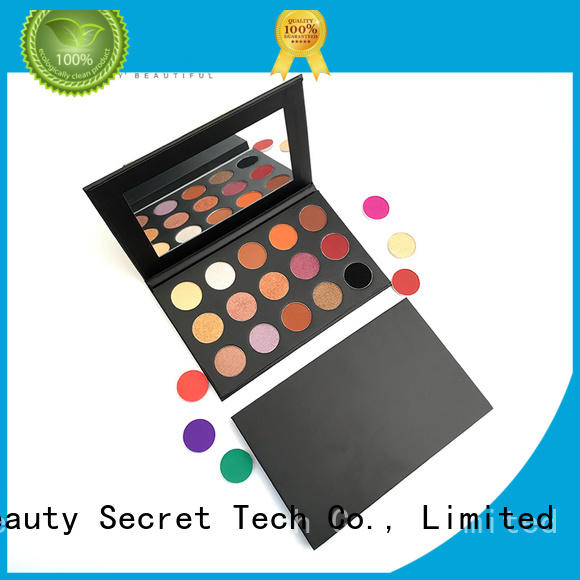 Beauty Secret Cosmetics loose powder best colorful eyeshadow palette powder for ladies