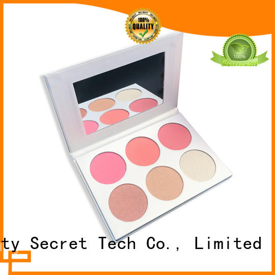 shiny blusher kit supplier fast delivery