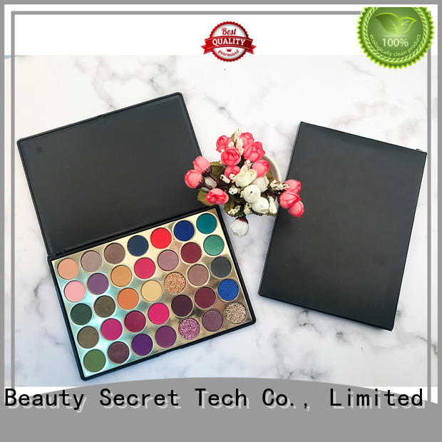 cheap eyeshadow palette powder for ladies Beauty Secret Cosmetics
