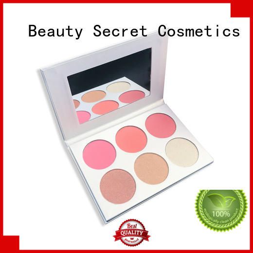 cosmetic blusher kit manufacturer for sale