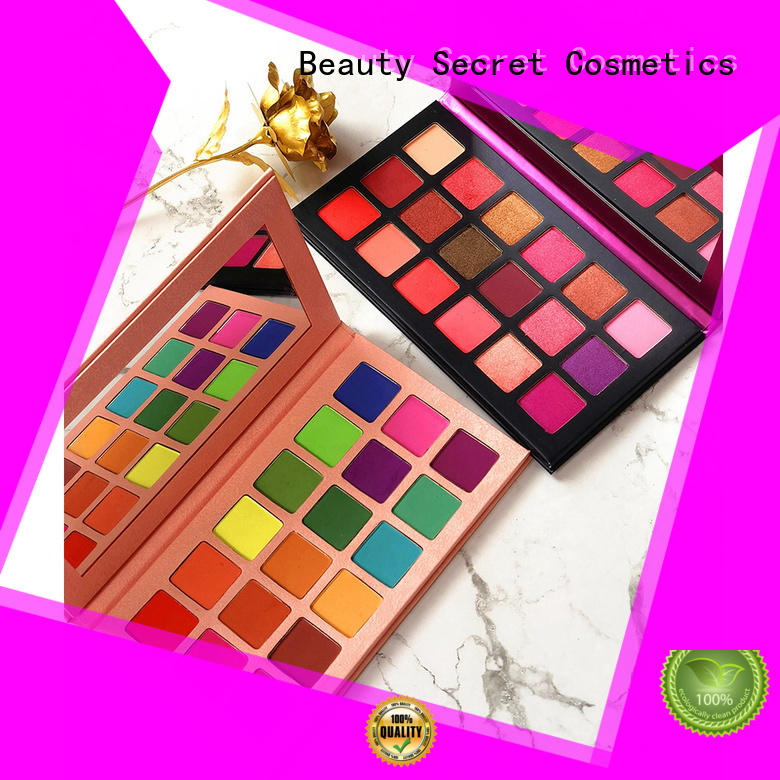 Beauty Secret Cosmetics beautiful new eyeshadow palettes powder for ladies