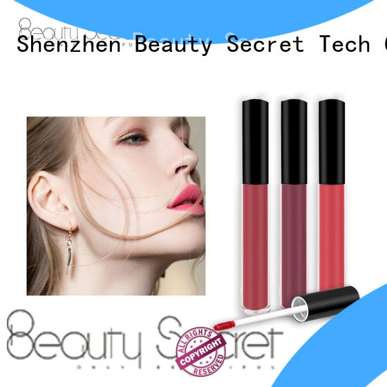 Beauty Secret Cosmetics Brand velvet packaging longlasting tube lipstick manufacture