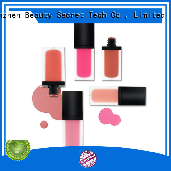 high quality blusher palette private label for makeup Beauty Secret Cosmetics
