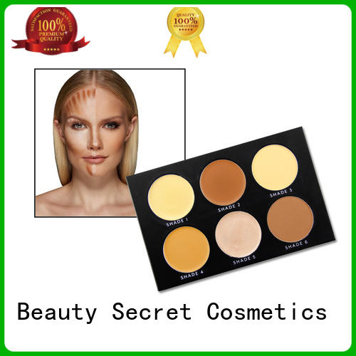 Beauty Secret Cosmetics customized liquid foundation palette for sale
