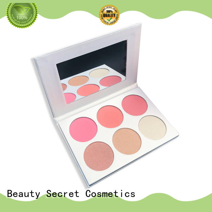 cosmetic blusher kit palette for sale